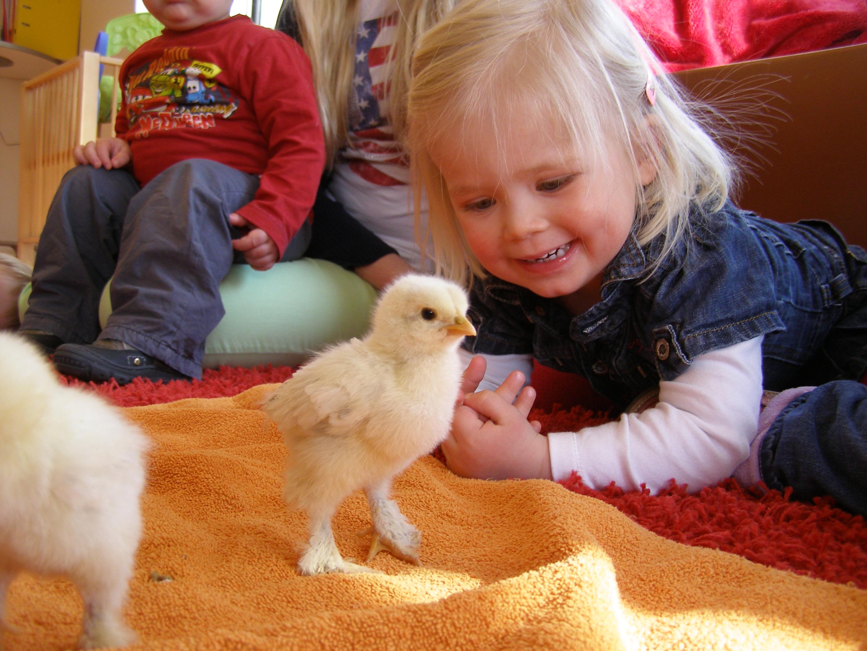 Iets Nieuws Ontwikkelingsgerichte kinderopvang | kinderdagverblijf bathmen &OS91